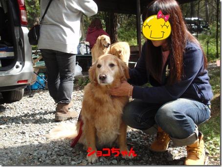 2011_1009_125012-PA090068