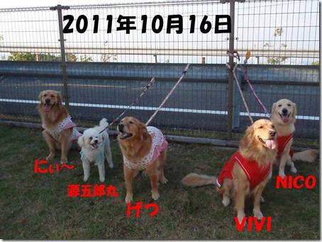 2011_1016_154505-PA160155